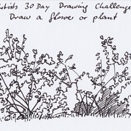 Day_18_plant