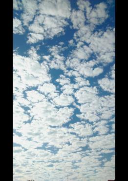 isidora romani summer sky munich