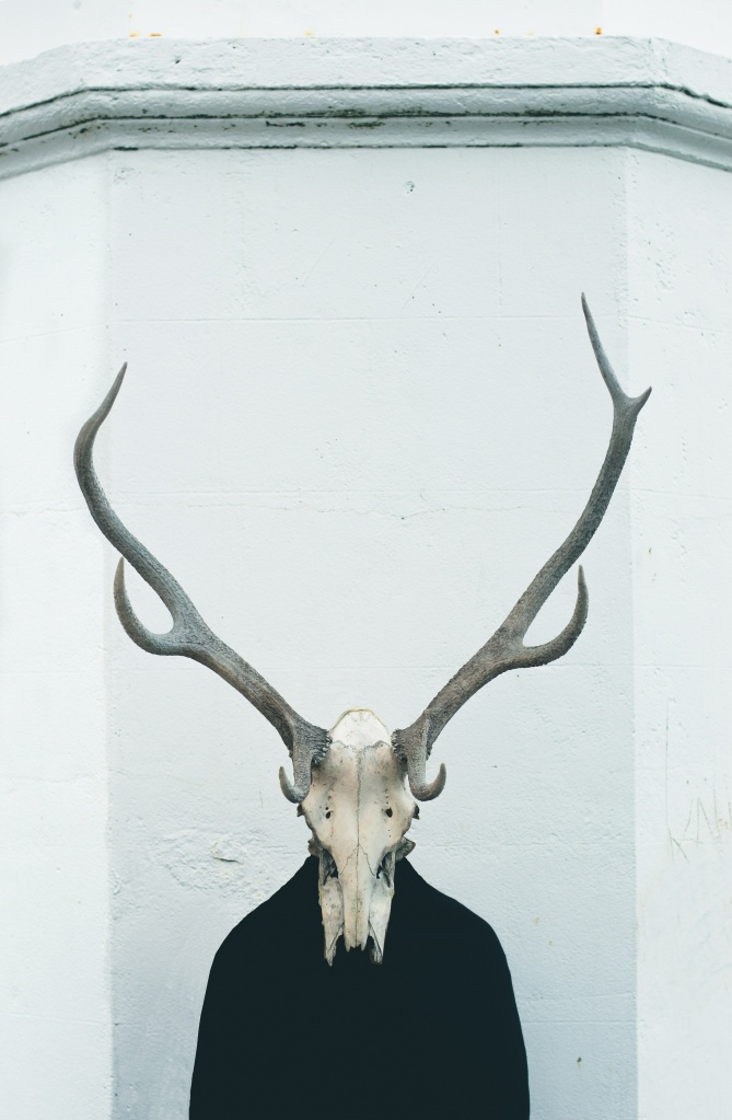 oscar-keys-unsplash-animal-skull-antlers-humanbody-