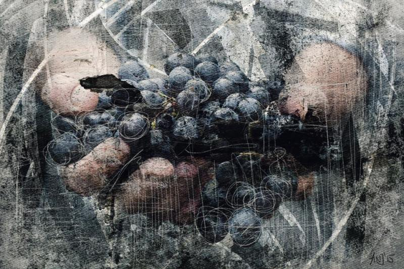 Munich Artists - Angela Josupeit - Grapes