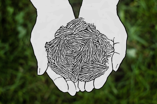 example of tutorial hands with needles