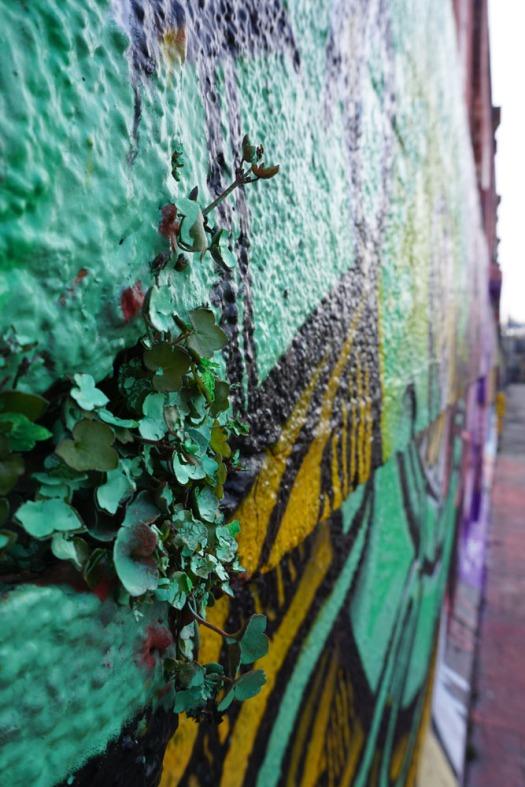 street-art-tumblingerstrasse-munich-march-2016-photo-by-emmy-horstkampDSC01744