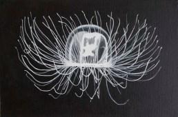 Michaela Wuehr - Jellyfish -380Euro - 30x20cm