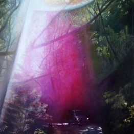 Michaela Wuehr - Julia Pfeiffer Burn - 4000 Euro - 100cm x 150cm