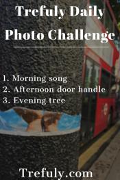 Morning Song Afternoon Door handle Evening Tree