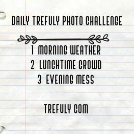 Trefuly Daily Photo Prompt Day 1