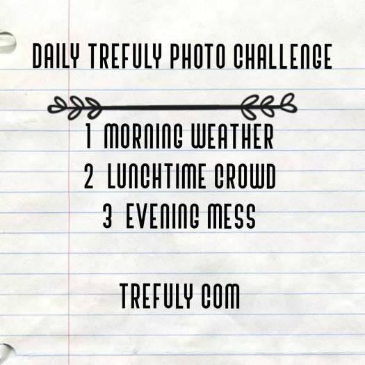 Trefuly-daily-photo-challenge-2020